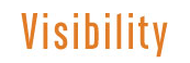 the visibility logo